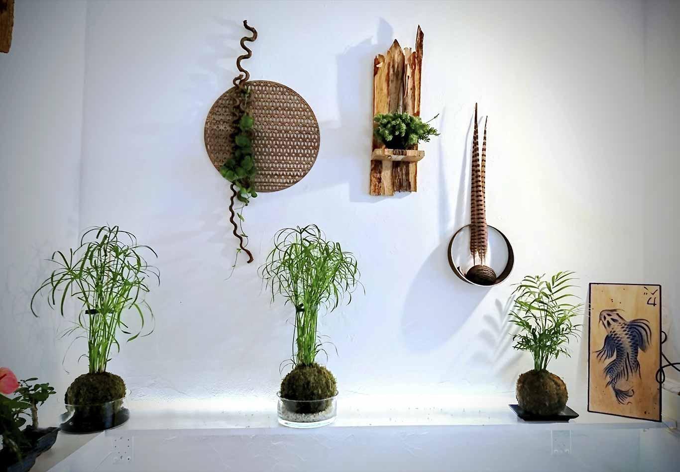 Kokedamas et structures végétales