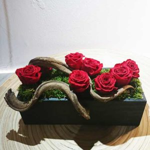 stabilise roses
